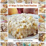 57 Ways To Use Fresh Peaches   Can't Stay Out of the Kitchen