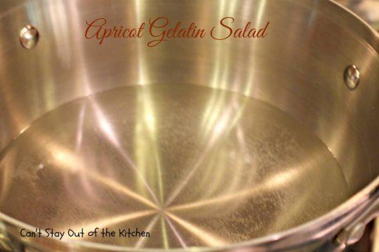 Apricot Gelatin Salad - IMG_0634