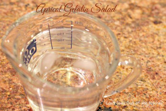 Apricot Gelatin Salad - IMG_0640