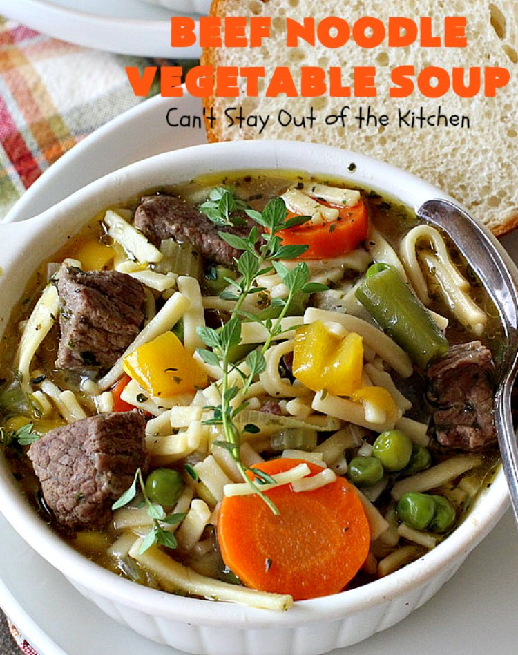 Best Beef Noodle Vegetable Soup – Can't Stay Out of the Kitchen