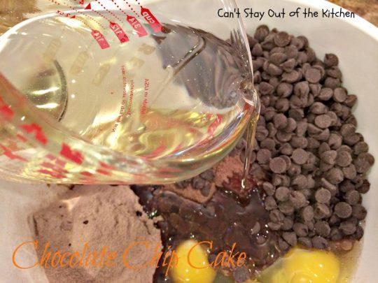 Chocolate Chip Cake - IMG_3015.jpg