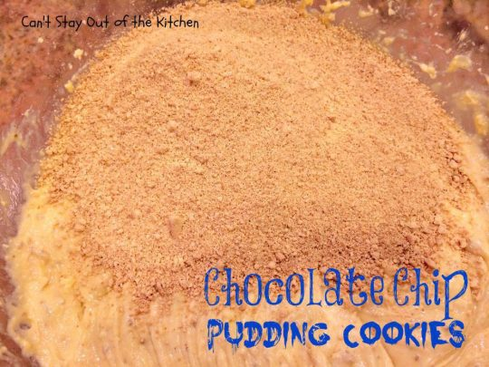 Chocolate Chip Pudding Cookies - IMG_0545