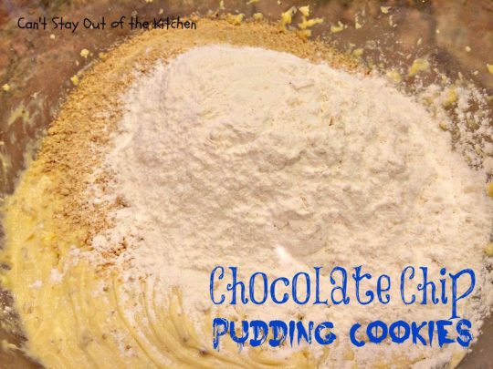 Chocolate Chip Pudding Cookies - IMG_0546