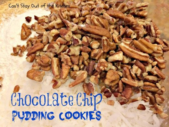 Chocolate Chip Pudding Cookies - IMG_0548