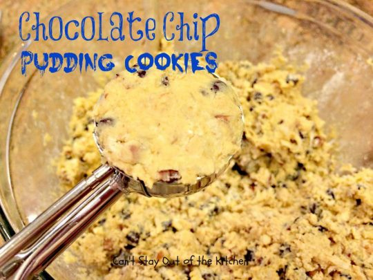 Chocolate Chip Pudding Cookies - IMG_0551