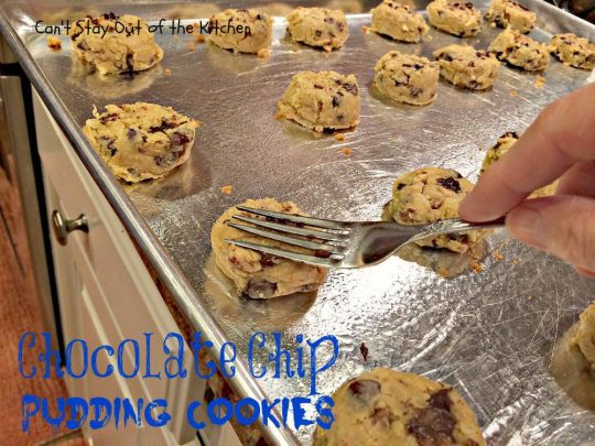 Chocolate Chip Pudding Cookies - IMG_0557