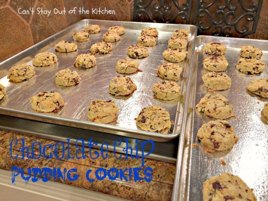Chocolate Chip Pudding Cookies - IMG_0558