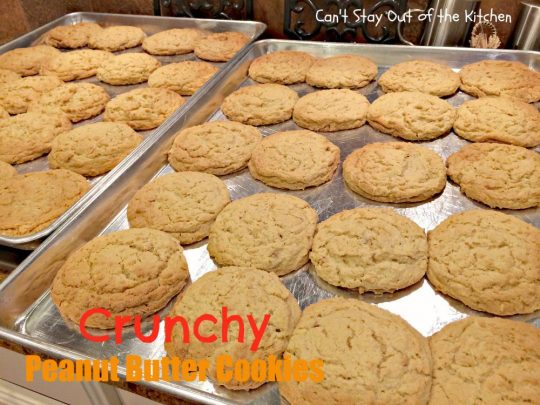 Crunchy Peanut Butter Cookies - IMG_5580