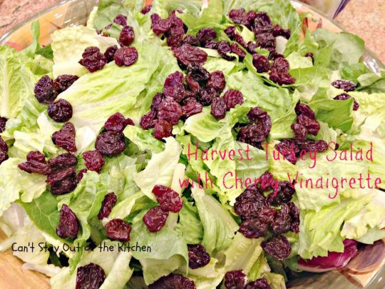 Harvest Turkey Salad with Cherry Vinaigrette - Recipe Pix 19 744.jpg
