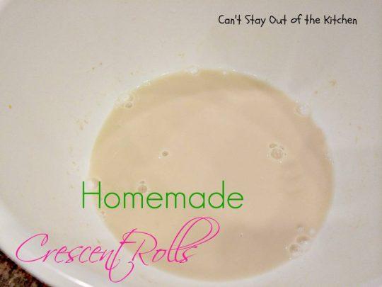 Homemade Crescent Rolls - IMG_2180.jpg