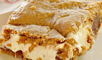 Luscious S'Mores Bars