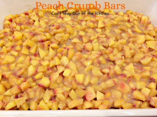 Peach Crumb Bars | Can't Stay Out of the Kitchen | lovely layered bars with a #shortbread crust, #peach filling and a #streusel and #cinnamon-sugar topping. #cookie #dessert