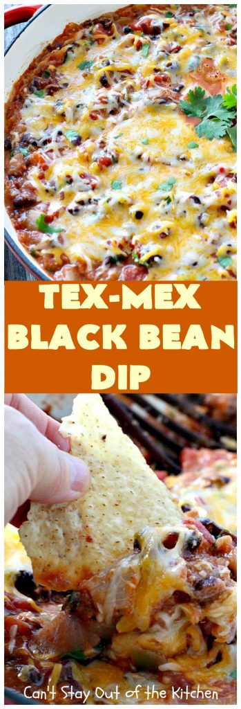 Tex-Mex Black Bean Dip | Can't Stay Out of the Kitchen | This #TexMex dip is amazing. It's one of the best #appetizers we've ever eaten. #blackbeans #cheese #salsa #glutenfree