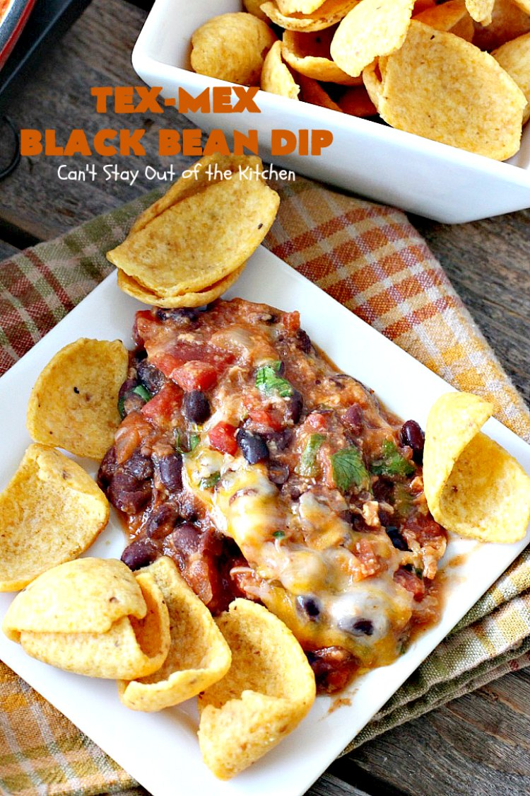 Tex Mex Black Bean Dip | Canu0027t Stay Out Of The Kitchen |