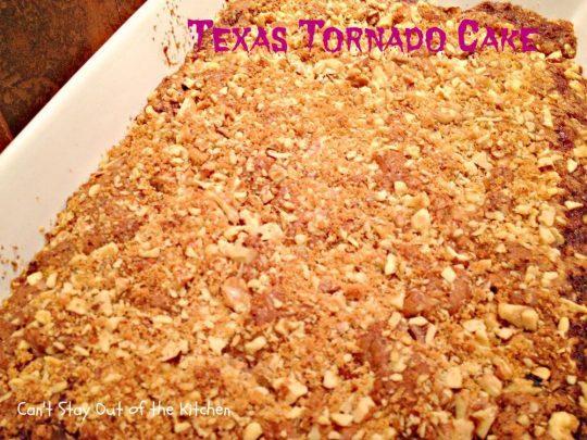 Texas Tornado Cake - IMG_5095