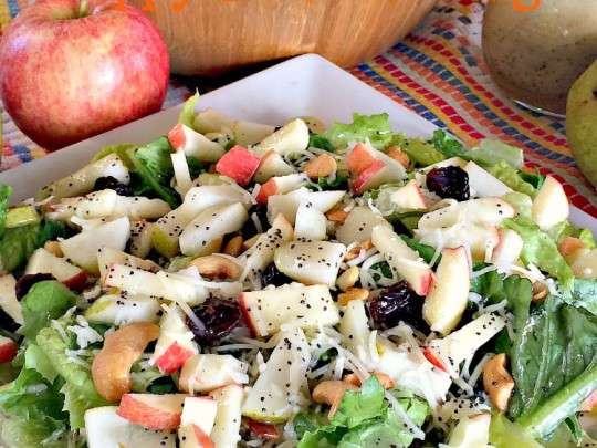 Winter Fruit Salad with Poppy Seed Dressing - IMG_8723.jpg